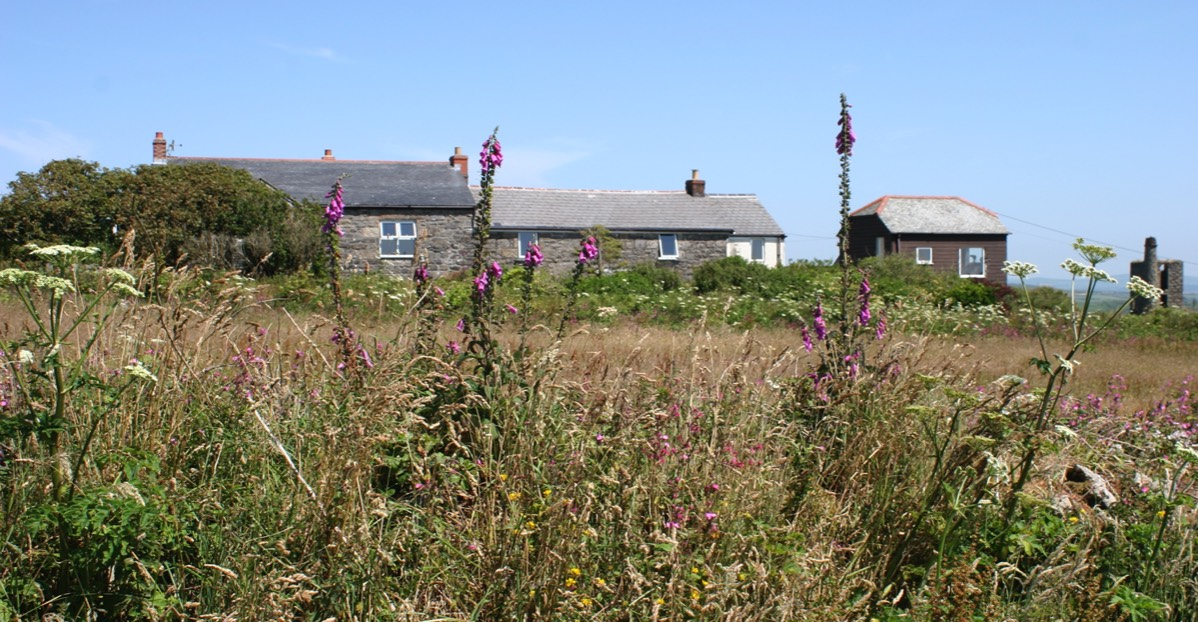 Bal Cottage and The Loft across field through Foxgloves